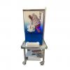 Icetech Soft Serve Ice cream Machine Single Phase Counter Top
